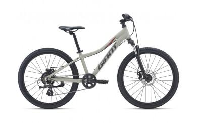 Велосипед GIANT XtC Jr Disc 24 2021
