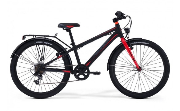 Детский велосипед Merida Dino J24 (2019)