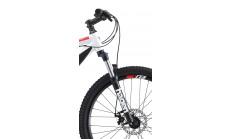 Горный велосипед Welt Ridge 1.0 D 2019