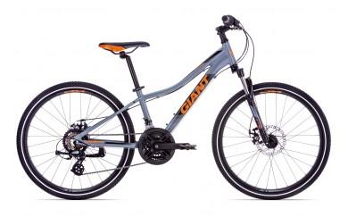 Подростковый велосипед Giant XtC Jr 1 Disc 24 2019