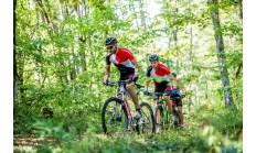 Горный велосипед Format 1213 27 (2016)