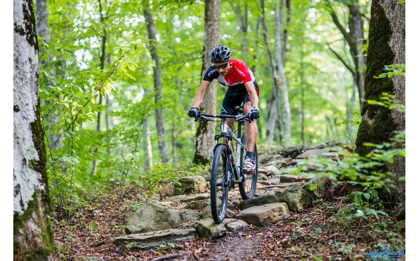 Горный велосипед Format 1212 Elite 27 (2016)