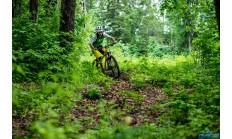 Горный велосипед Format 1312 (2016)